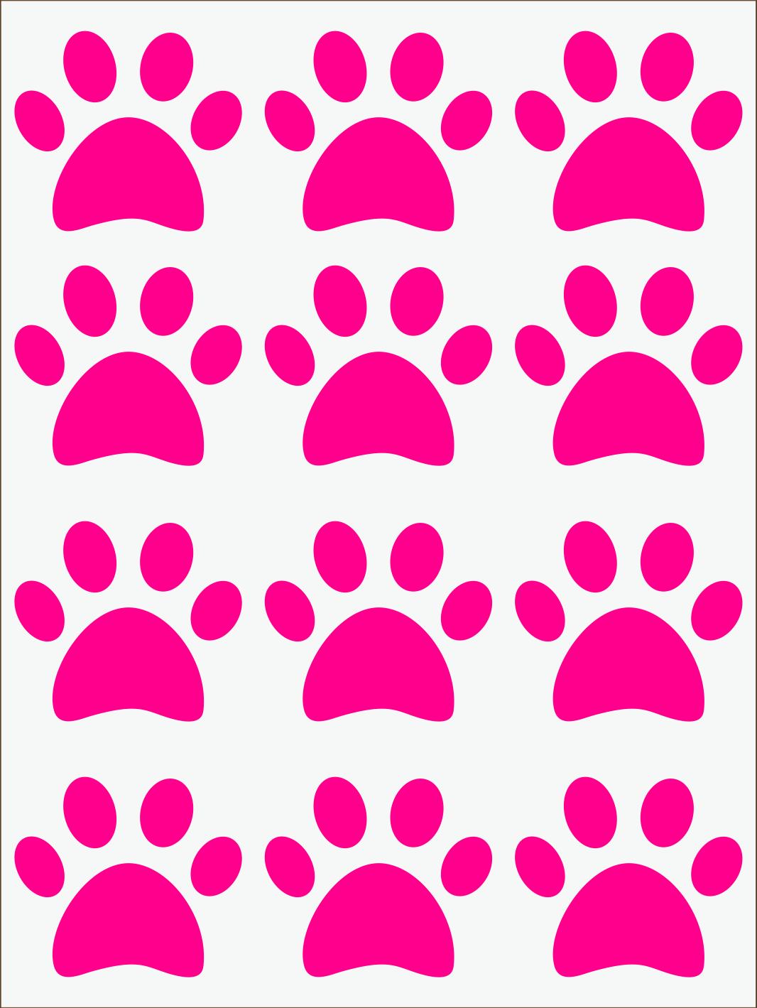 Labky neon ružový IMG